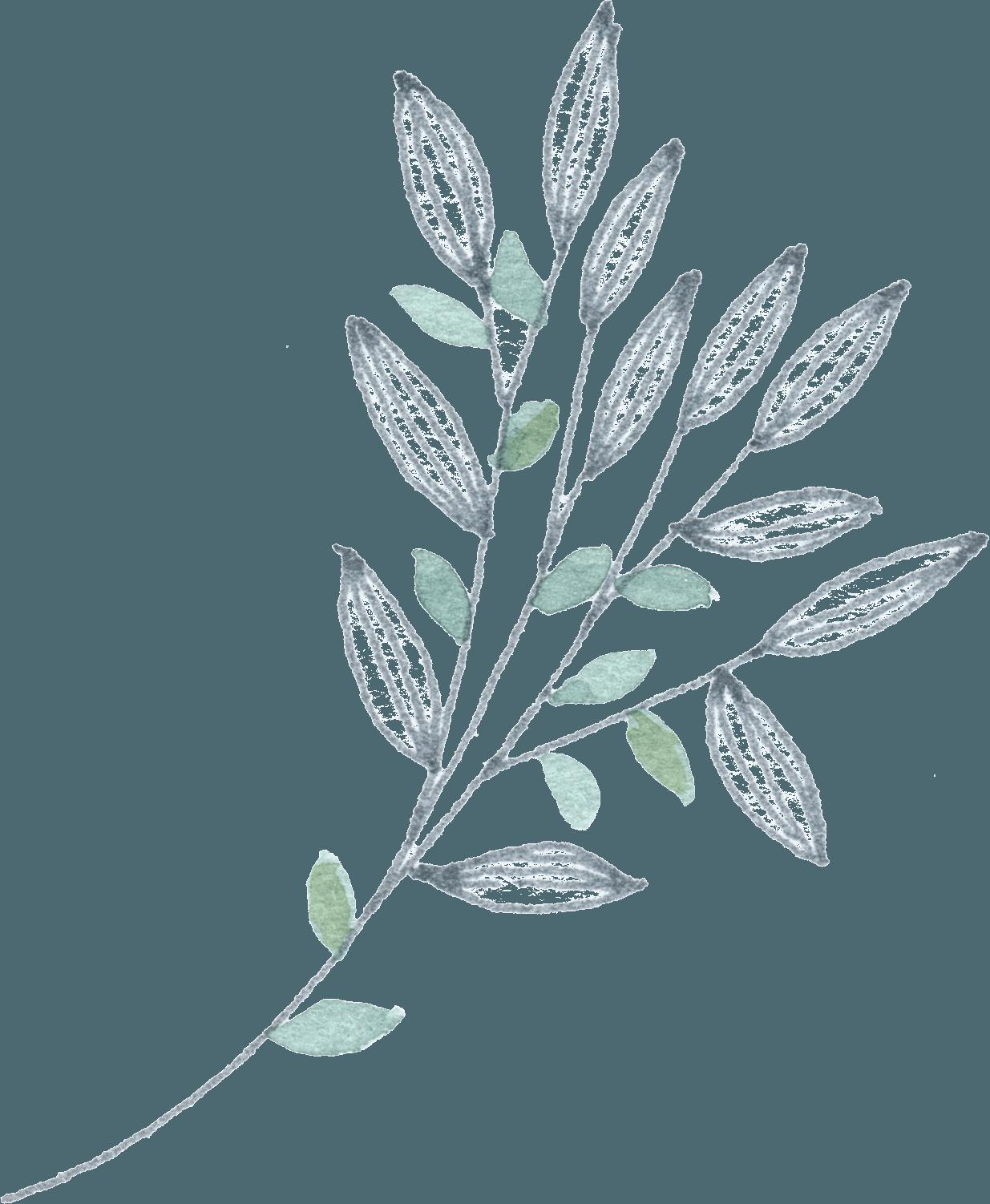 Grey_green_bunch_3 filigrane