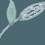 Grey_green_single_1 filigrane