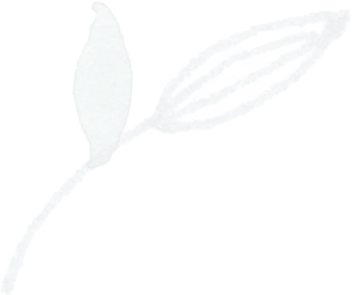 Grey_green_single_1 filigrane