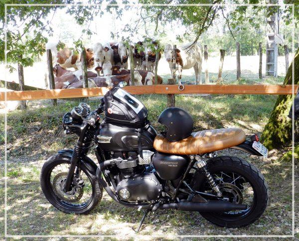 Guetter les motards à la Ferme de Balme
