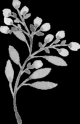 Branche jaune petite